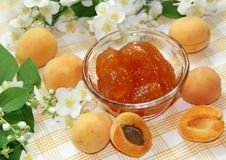 Fresh ripe apricots and apricot jam Royalty Free Stock Images