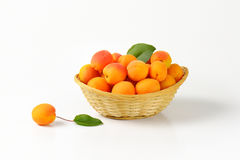 Fresh ripe apricots Royalty Free Stock Image
