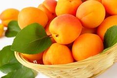 Fresh ripe apricots Stock Photography