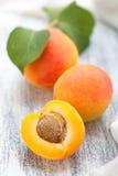 Fresh ripe apricots . Stock Image