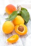 Fresh ripe apricots . Stock Photo