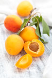 Fresh ripe apricots . Royalty Free Stock Photos