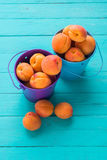 Fresh ripe apricots in colored metal pails. Fresh ripe apricots colored metal buckets on a turquoise wooden background stock image