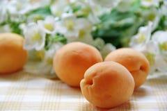 Fresh ripe apricots Stock Image