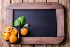 Fresh ripe apricots in wood bowl on vintage slate chalk board background. Selective focus. Background with place for some text. To Royalty Free Stock Image