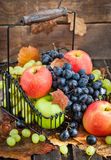 Fresh ripe autumn apples and grapes Royalty Free Stock Images