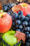 Fresh ripe autumn apples and grapes Stock Photography
