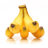 Fresh ripe bananas bunch isolated on white. Bananas bunch isolated on white background Royalty Free Stock Images
