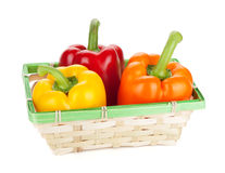Fresh ripe bell peppers in basket Royalty Free Stock Images