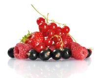 Fresh ripe berries Royalty Free Stock Photos