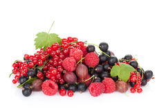 Fresh ripe berries Royalty Free Stock Photos