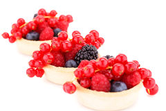 Fresh ripe berries in tartlets. Isolated on white background Royalty Free Stock Photo