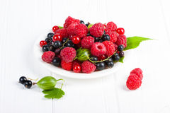 Fresh ripe berries on white wooden table. Royalty Free Stock Photo
