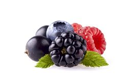 Fresh ripe berry in closeup. Raspberry, blueberry, blackberry an. D black currant on white background. Mix berries royalty free stock images
