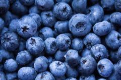 Fresh ripe bilberry background Royalty Free Stock Photos