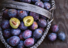 Fresh ripe black plums in a basket Royalty Free Stock Photography