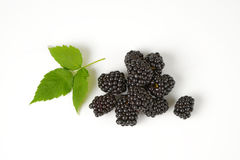 Fresh ripe blackberries Royalty Free Stock Image