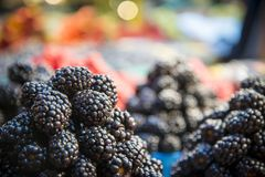 Fresh Ripe Blackberries. Shot in local market Royalty Free Stock Photos