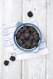 Fresh ripe blackberries in souffle dish elevated view Royalty Free Stock Photos