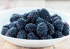 Fresh ripe blackberries. In white bowl Royalty Free Stock Photos
