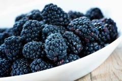 Fresh ripe blackberries. In white bowl Royalty Free Stock Images