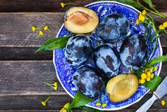 Fresh  ripe blue plums on plate Royalty Free Stock Photography
