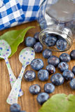 Fresh ripe blueberries Stock Image