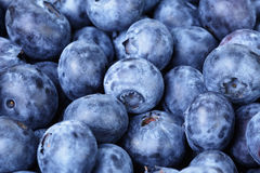 Fresh ripe blueberries closeup Royalty Free Stock Images