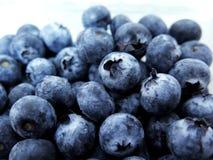 Fresh Ripe Blueberries Royalty Free Stock Photography