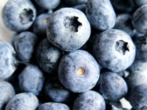 Fresh Ripe Blueberries Stock Photos
