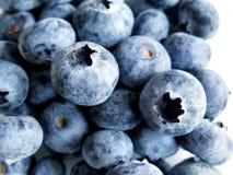 Fresh Ripe Blueberries Royalty Free Stock Image