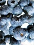 Fresh Ripe Blueberries Royalty Free Stock Photos