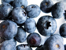 Fresh Ripe Blueberries Royalty Free Stock Images