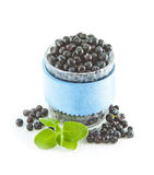 Fresh ripe blueberries and green leaves on a white background. Blueberries in a glass, isolated Stock Photography