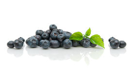 Fresh ripe blueberries and green leaves on a white background Stock Photos