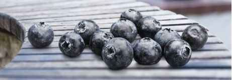 Fresh ripe blueberries on wooden table. Fresh ripe blueberries healthy food low calorie natural food organic food Stock Photography