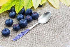 Fresh ripe blueberries with leaves,spoon on linen cloth Royalty Free Stock Photography