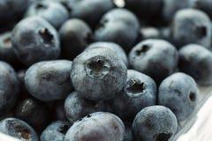 Fresh ripe blueberries, macro shot, selective focus.  stock photo