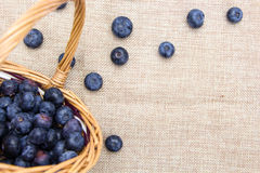 Fresh ripe blueberries in wicker basket Stock Images