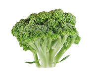 Fresh ripe broccoli tree with green leaves isolated on white Royalty Free Stock Photography
