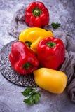 Fresh ripe  bulgarian pepper Royalty Free Stock Images