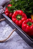 Fresh ripe  bulgarian pepper Royalty Free Stock Photos