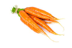 Fresh ripe carrots. Isolated on white background Royalty Free Stock Photography