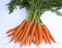 Fresh ripe carrots  on white background. Bunch of fresh carrots  on white background Royalty Free Stock Photography