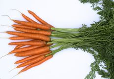 Fresh ripe carrots  on white background. Bunch of fresh carrots  on white background Stock Images