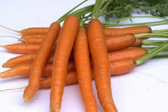 Fresh ripe carrots  on white background. Royalty Free Stock Photos