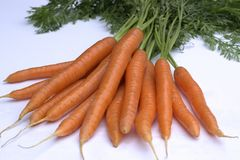 Fresh ripe carrots  on white background. Bunch of fresh carrots  on white background Stock Photo