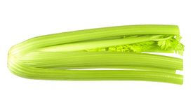 Fresh ripe celery Stock Images