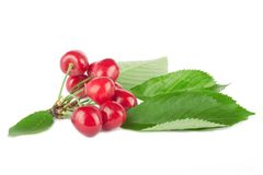 Fresh ripe cherries Stock Image