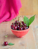 Fresh and ripe cherries from the garden. Season berries, summer food. Some fresh and juicy cherries on the table,decorated with gauze napkin Royalty Free Stock Image